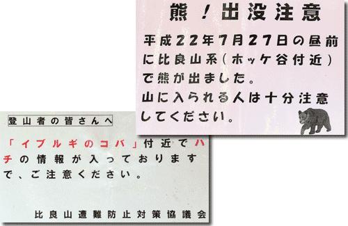 youbai_01